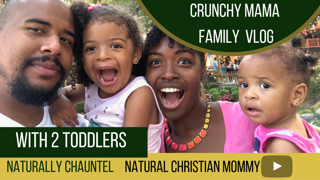 Knotts Berry Farm Family Outing with Toddler Sisters – Natural Mom Vlog – Naturally Chauntel