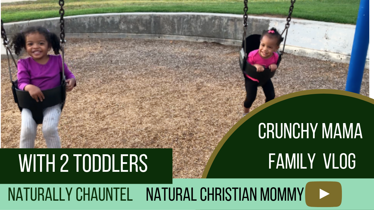 1 Year Old First Sentence – Natural Mom Vlog –  Two Toddlers with Mama at Park – Family Outing